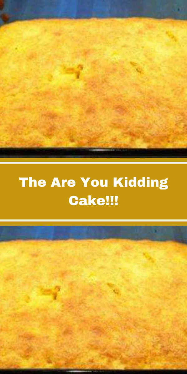 The Are You Kidding Cake!!!