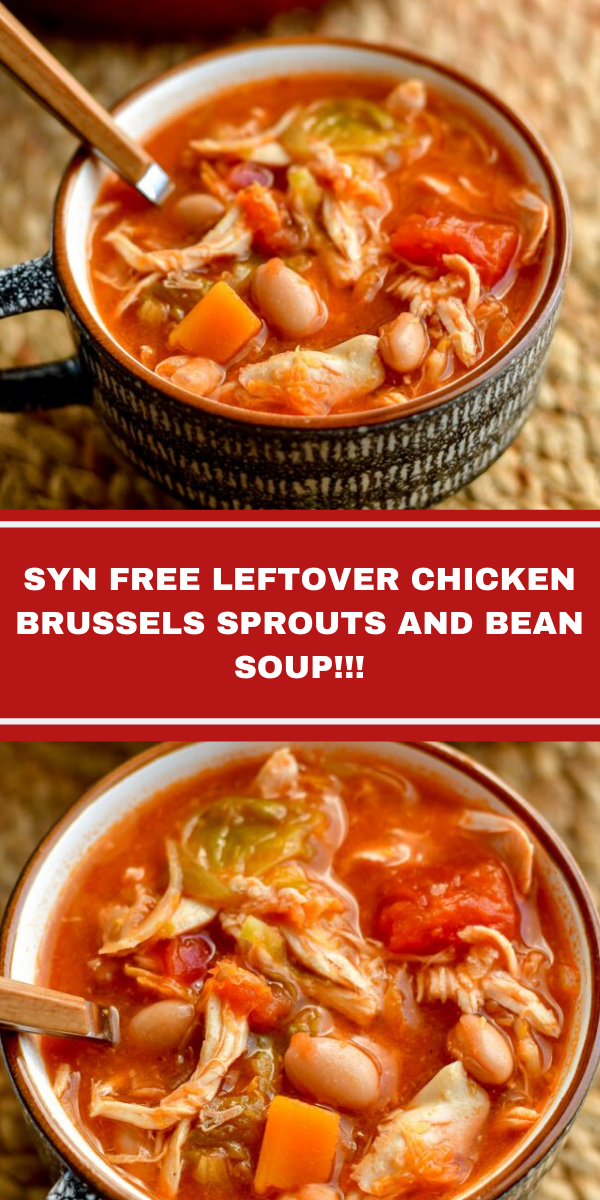 SYN FREE LEFTOVER CHICKEN BRUSSELS SPROUTS AND BEAN SOUP!!!