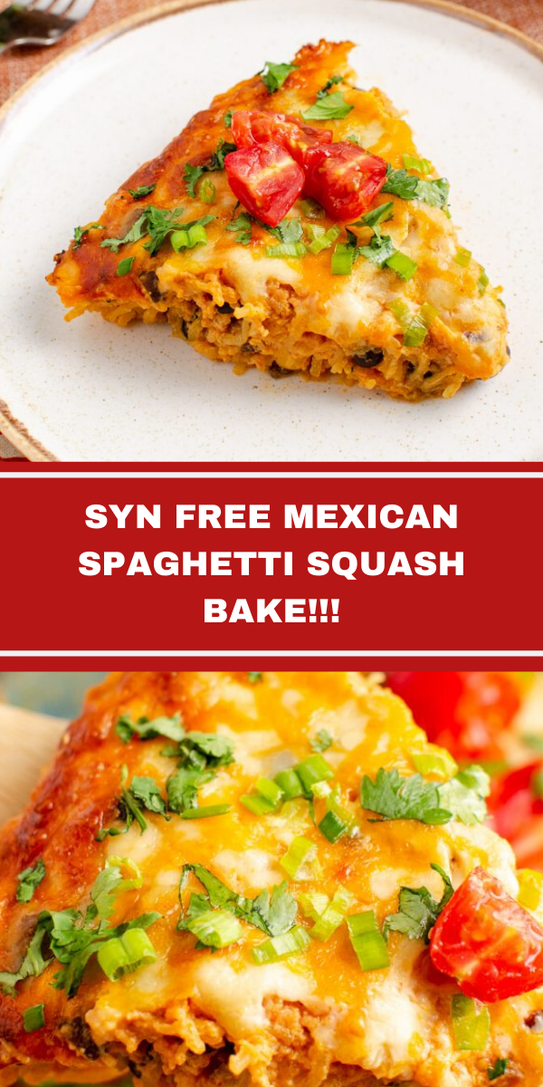 SYN FREE MEXICAN SPAGHETTI SQUASH BAKE!!!