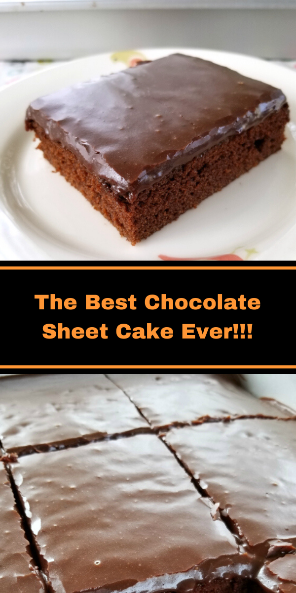 The Best Chocolate Sheet Cake Ever!!!