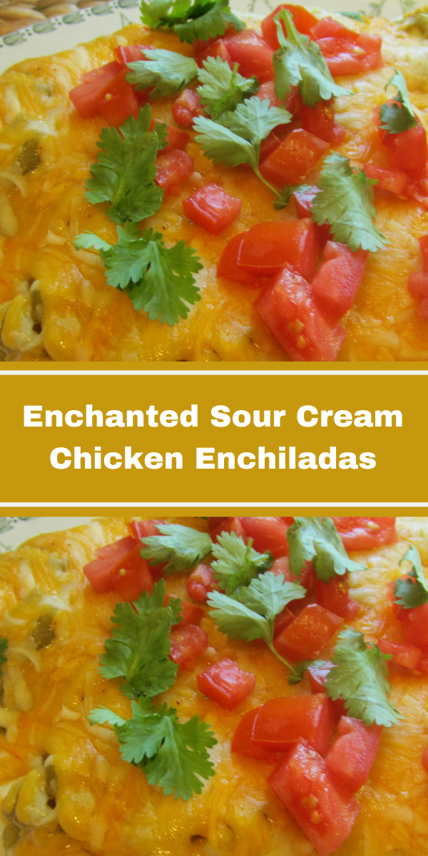 Enchanted Sour Cream Chicken Enchilada