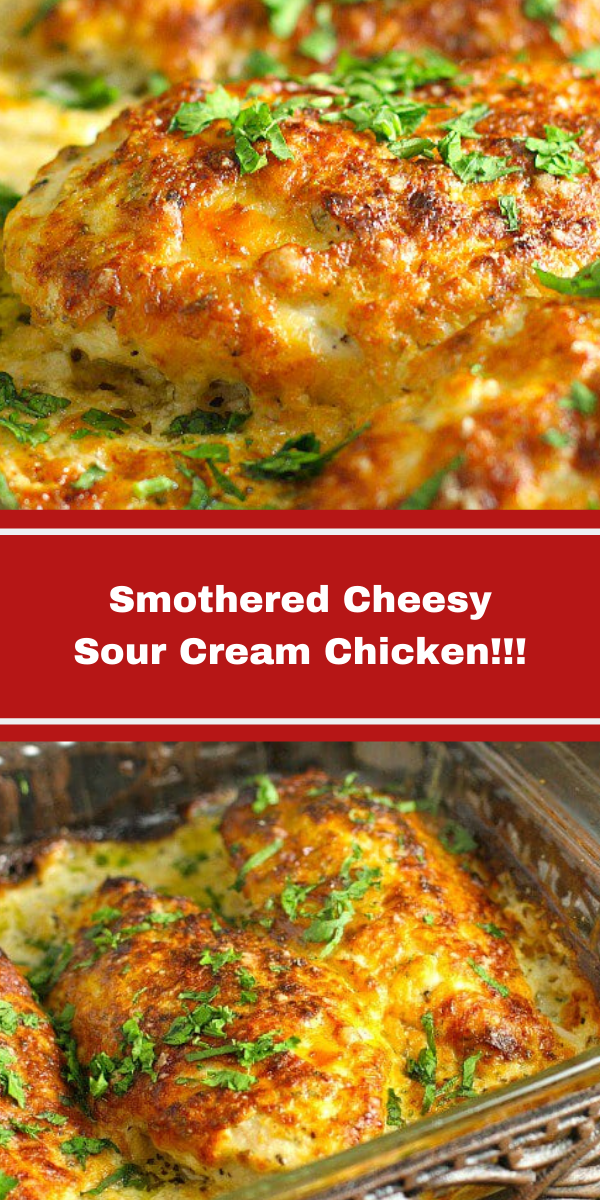 Smothered Cheesy Sour Cream Chicken!!!