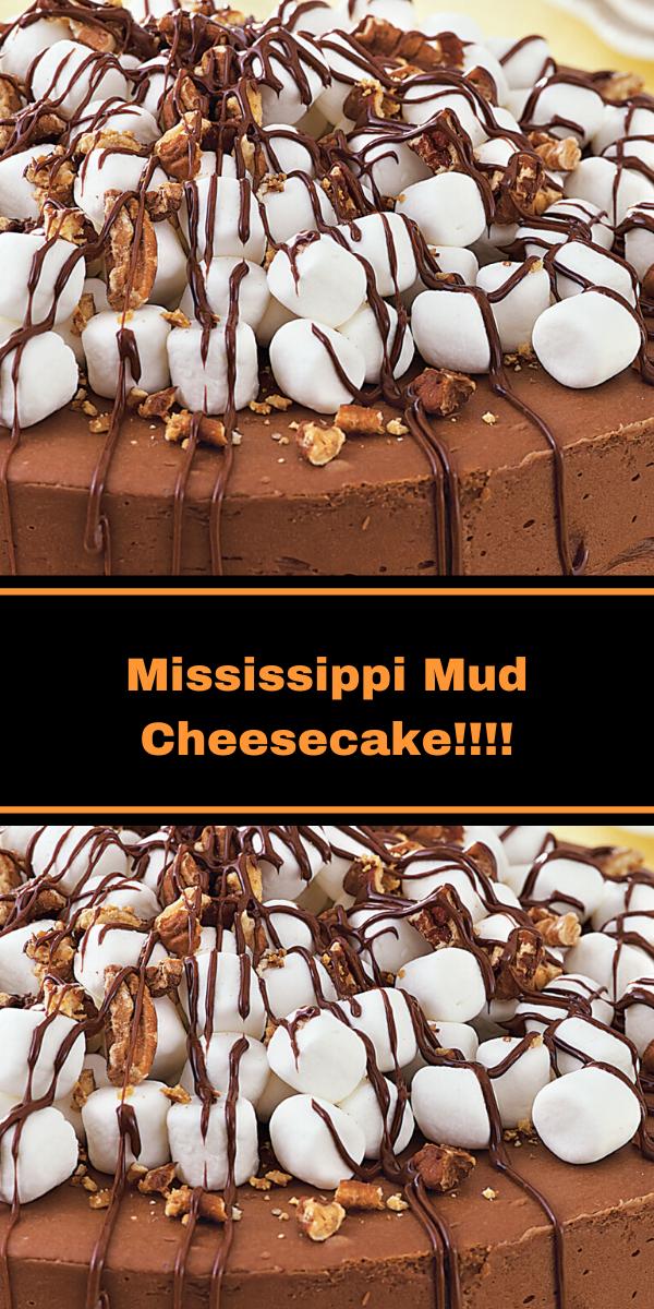 Mississippi Mud Cheesecake!!!!