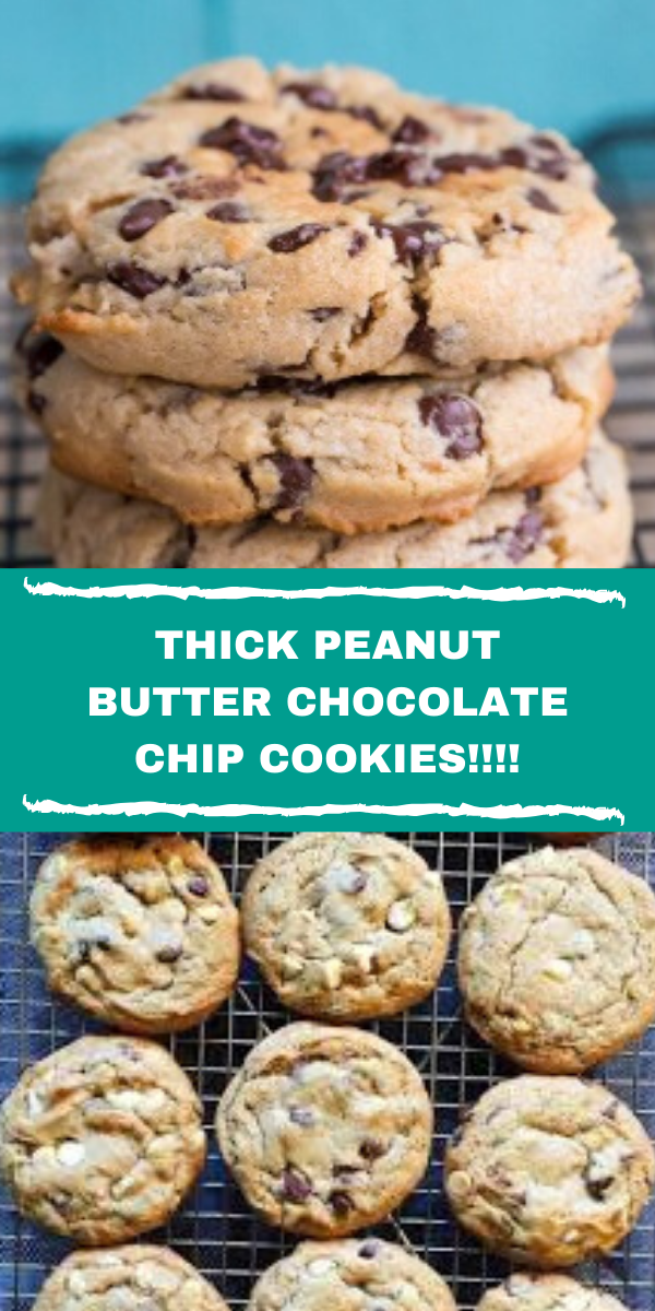 THICK PEANUT BUTTER CHOCOLATE CHIP COOKIES!!!!